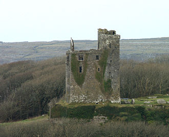 Ballinalacken Castle - Ballinalacken Castle in 2006