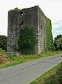Ballinoroher Castle - geograph.org.uk - 537755.jpg