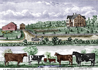 Muscatine County, Iowa - C.S. Barclay farm illustration in 1875