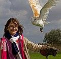 Barn Owl 1 (6796266844).jpg