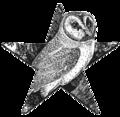 Barn Owl Barnstar.png