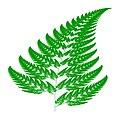 Barnsley fern - py.jpg