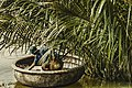 Basket Boat and the Bamboo forest (Unsplash).jpg