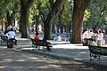 Basking in the Park, Buenos Aires (4514415877).jpg