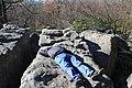 Bauchman Rocks - panoramio (8).jpg