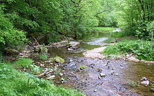 Beaver Creek Valley State Park - East Beaver Creek, a spring-fed trout stream, has carved the narrow Beaver Creek Valley.