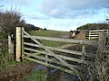 Beef pasture - geograph.org.uk - 698365.jpg