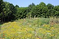Beislovenpark Zottegem 23.jpg