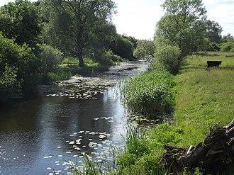 Pakruojis District Municipality - Beržtalis River near Žeimelis