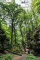 Berdorf (LU), Aesbachtal -- 2015 -- 6378.jpg