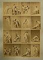 Bewegungsstudie, ca. 1880.jpg