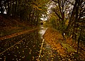 Bike Path to Autumn (5108671145).jpg