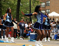 The Bud Billiken Parade and Picnic is the United States' largest African American parade.