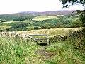 Billsmoor Park - geograph.org.uk - 540971.jpg