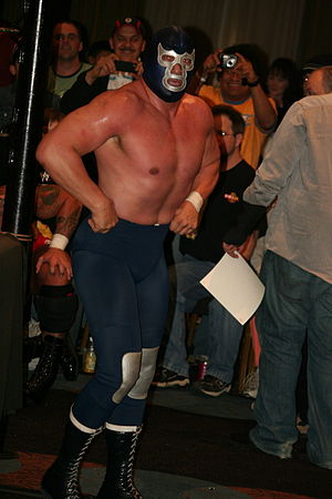 Blue Demon Jr. - Blue Demon posing after a match