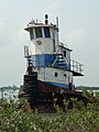 Boat at the Marina, on Ambergris Caye Belize.jpg