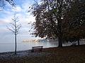 Bodensee im Herbst.jpg