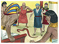 Book of Exodus Chapter 8-1 (Bible Illustrations by Sweet Media).jpg