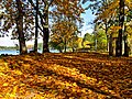 Borsk, jesienna alejka nad jeziorem.jpg
