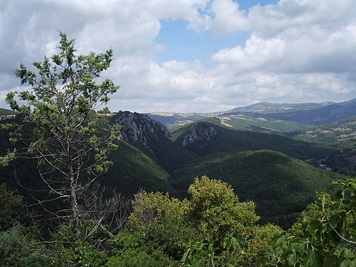 Veduta del Bosco dei Rocconi da Rocchette di Fazio