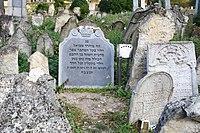 Boskovice-židovský-hřbitov2018g.jpg