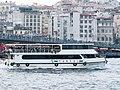 Bosphorus, Istanbul (P1100290).jpg