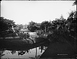 Botanic Gardens, Sydney (4903284909).jpg