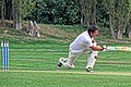 Botany Bay CC v Rosaneri CC at Botany Bay, Enfield, London 4.jpg