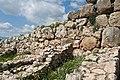 Boulders and Flowers (3373240009).jpg