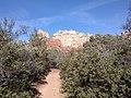 Boynton Canyon Trail, Sedona, Arizona - panoramio (44).jpg