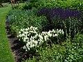 Bressingham Steam and Gardens 13.jpg