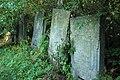 Briceni Jewish Cemetery 3.JPG