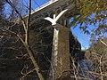 Bridge over Elora Gorge20200321 183603519 iOS.jpg