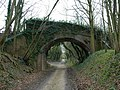 Bridge over dismantled railway - geograph.org.uk - 736728.jpg