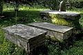 British Cemetery Corfu Town 13.jpg