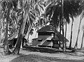 Buildings amongst palm trees in Tahiti (AM 85679-1).jpg