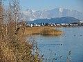 Busskirch - Buechberg - Federispitz-Chüemettler-Speer - Holzbrücke 2013-12-01 14-40-51 (P7800).JPG