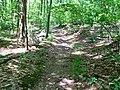 Byram Township, NJ, USA - panoramio (1).jpg