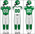 CFLW Jersey SSK 2007.PNG