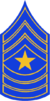 CO - SP Sergeant Major Stripes.png