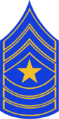 CO - SP Sergeant Major Stripes.png