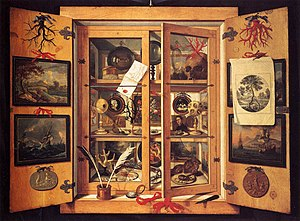 English: Cabinet of Curiosities (1690s) by Dom...