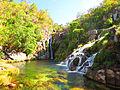 Cachoeira da Capivara.JPG