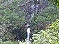 Cachoeira da Farofa de frente - panoramio.jpg