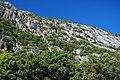 Cadillac Mountain Granite (Silurian-Devonian boundary times, ~419 Ma; Precipice, Champlain Mountain, Mt. Desert Island, Maine, USA) 1.jpg