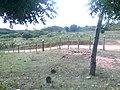 Cajazeirinhas - State of Paraíba, Brazil - panoramio (2).jpg