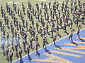 Cal Band performing pregame at 2008 Big Game 04.JPG