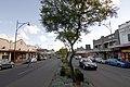 Camden NSW 2570, Australia - panoramio (12).jpg
