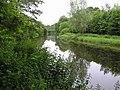 Camowen River - geograph.org.uk - 1364059.jpg