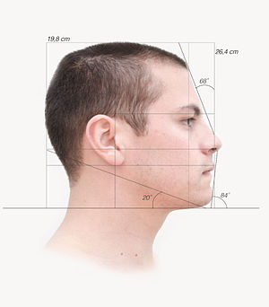 Petrus Camper - Picture of a human male based on Petrus Camper measurements